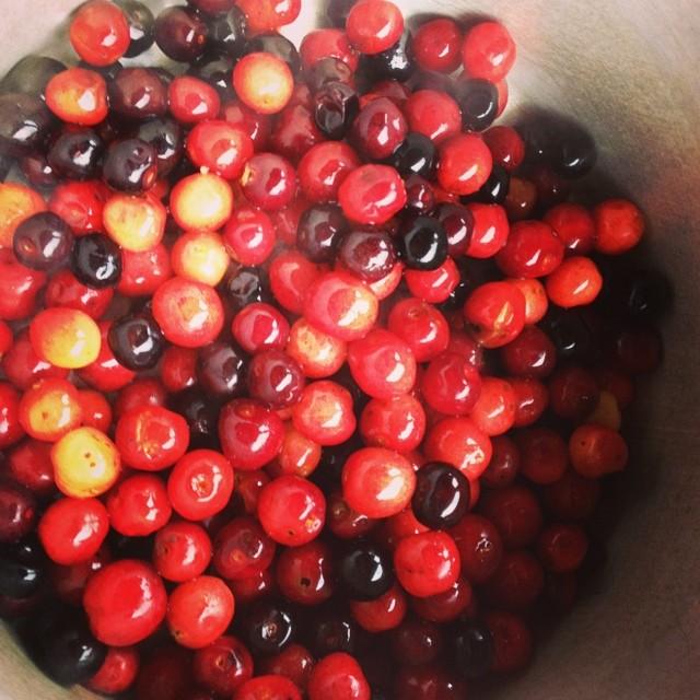 Cherries as dessert! Mmmmmm
